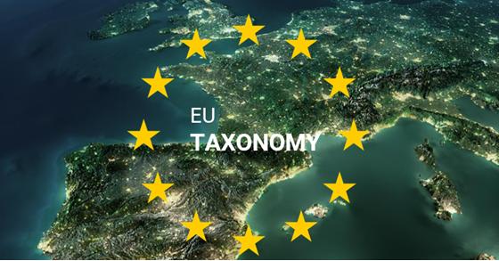 ¿Por qué es importante la Taxonomía según criterios ASG para medir el riesgo?